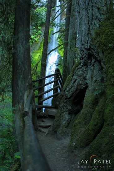 Beginner Landscape Photography example of soft focus and blown highlights from Marymere Falls, Olympic National Park
