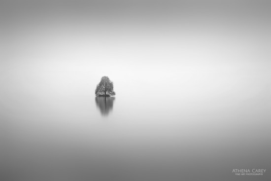 Black and White Photography at Lake Geneva by Athena Carey