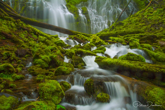 Proxy Falls is Located along the McKenzie Pass Highway in Lane County, Oregon.